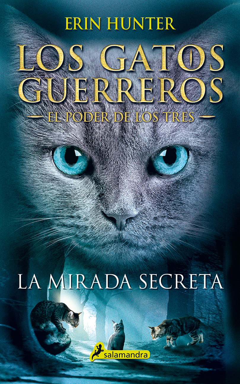 La mirada secreta - Hunter Erin