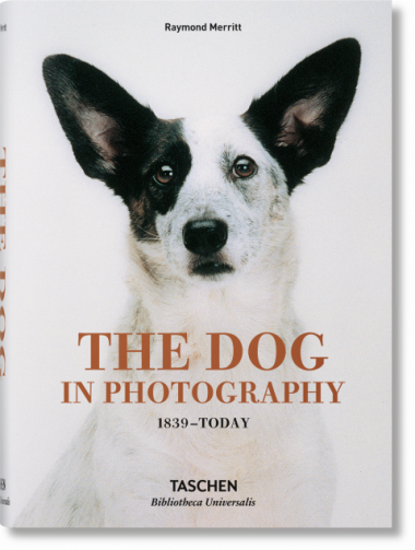 The Dog in Photography 1839–Today - Merritt Raymond
