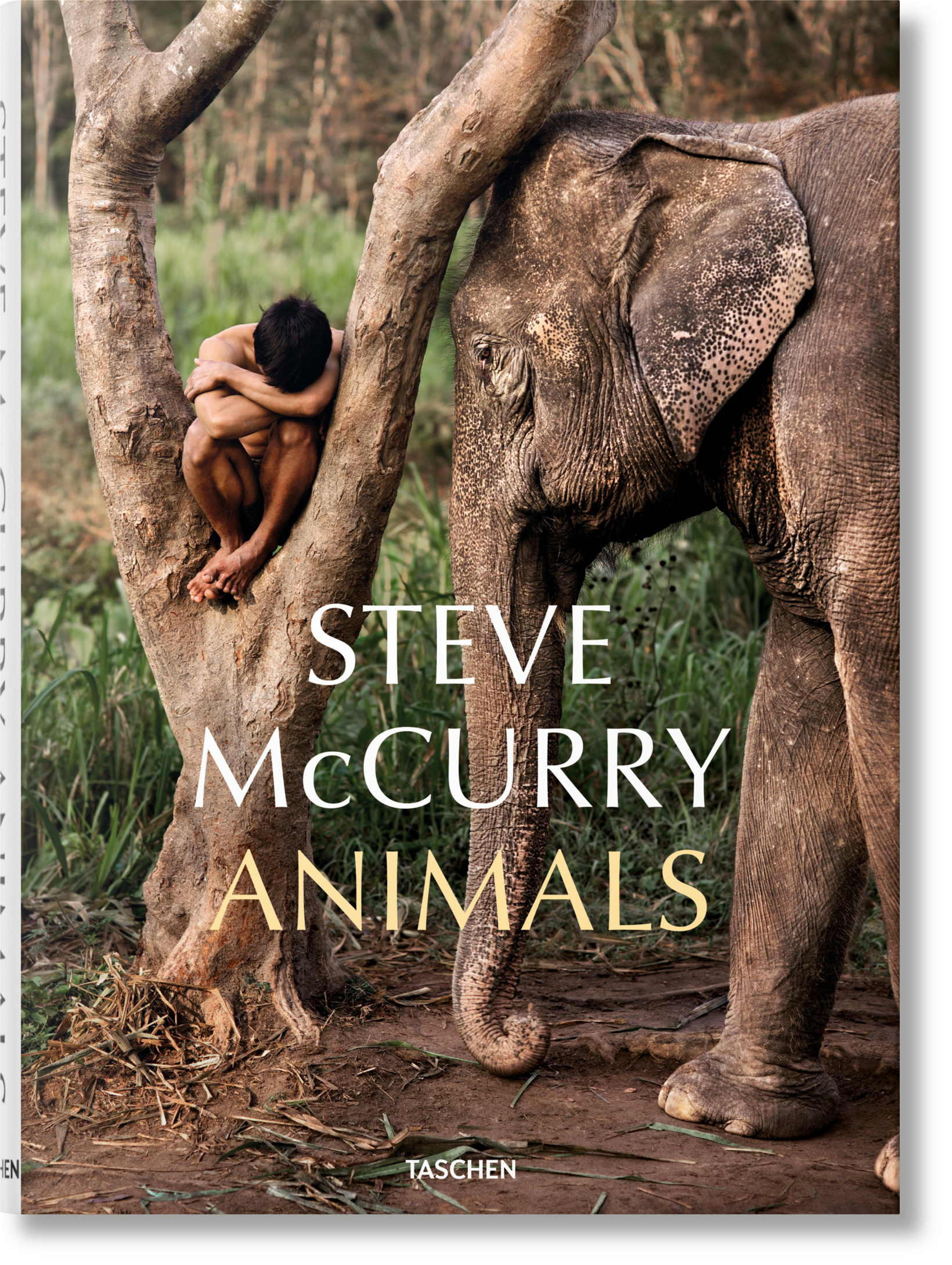 Steve McCurry. Animals - McCurry Steve